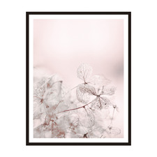 Pale Butterfly Framed Printed Wall Art