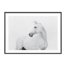 Horse Lover Framed Print