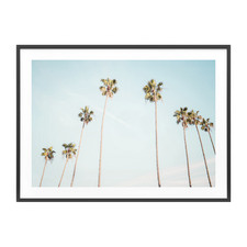 Palm View Framed Print