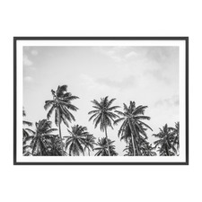 Hawaii Palms Framed Print