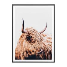 Hamish Highland Cow Framed Print