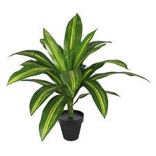 Potted Faux Dracaena Burley Plant
