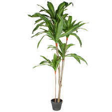 165cm Potted Faux Dracaena Leaves