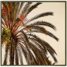 Karrina Sepia Palm Framed Canvas Wall Art