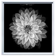 Bow Flower Framed Canvas Wall Art
