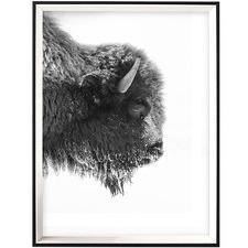 Profile Bison Framed Printed Wall Art