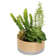 16cm Faux Mixed Succulents in Hex Ceramic Pot