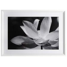 Hallie Flower Framed Printed Wall Art