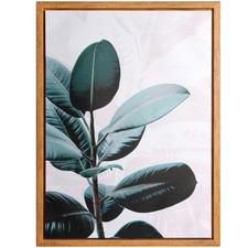 Fiddle Leaf Tree Framed Canvas Wall Art