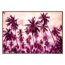 Jenson Palm Framed Canvas Wall Art