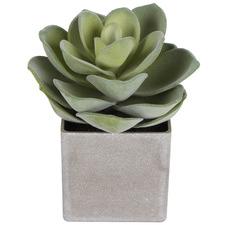 21cm Potted Faux Conca Succulent