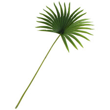 82cm Faux Willow Real Touch Mini Fan Palm Leaf Stems (Set of 4)