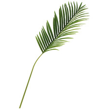 113cm Faux Lana Real Touch Areca Leaf Stems (Set of 4)