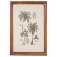 Vintage Jungle Botany Framed Canvas Wall Art
