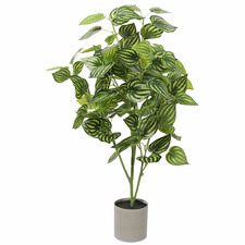 70cm Potted Faux Mixed Philodendron Plant