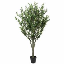 180cm Potted Faux Bushy Olive Tree