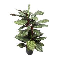 90cm Potted Faux Cordyline Plant