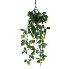 60cm Faux Hanging Foliage & White Flowers (Set of 3)