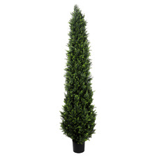 210cm Potted Faux Cypress Pine Tree