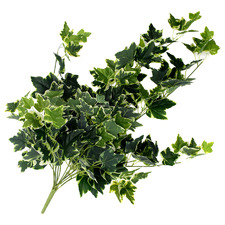 100cm Faux Mixed Green & White Tipped Hanging Ivy Bush