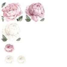 7 Piece Blush Peony & Rose Wall Decal Set