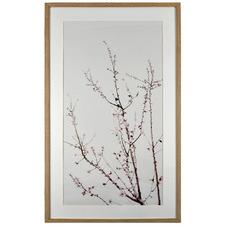 Spring Framed Printed Wall Art
