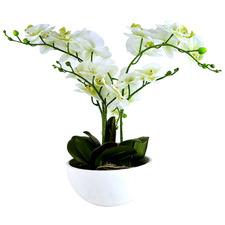 50cm Potted Faux Philaenopsis Orchid Plant