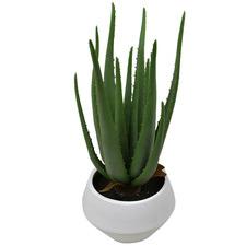 44cm Potted Faux Aloe Plant