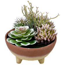 25cm Faux Succulents with Tahoe Footed Bowl