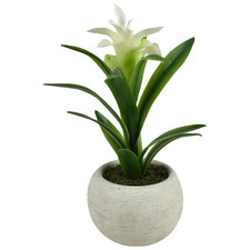 27cm Potted Faux Billbergia Plant