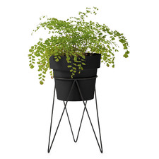 Maceta Metal Plant Stand with Pot