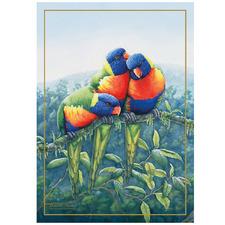Lorikeet Birds of Australia KC Cotton Teatowel