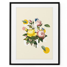 Colourful Rose Framed Print Wall Art