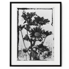 It's All Black & White Framed Print Wall Art