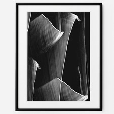 Moving Modo Framed Print Wall Art