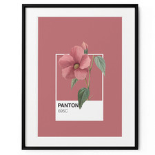 Hibiscus Framed Print Wall Art