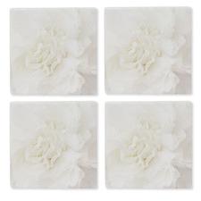 Cream Full Bloom Ceramic Coasters (Set of 4)