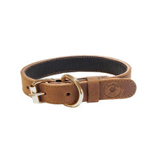 Pearl Buffalo Leather Dog Collar