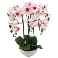 55cm Purple Potted Faux Orchid Plant