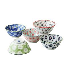 5 Piece Porcelain Bowl Set