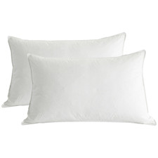 Pure White Duck Feather Standard Pillows (Set of 2)