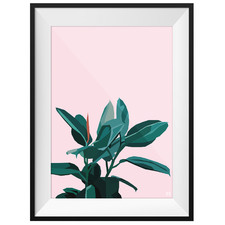 Plants On Pink Framed Printed Wall Art