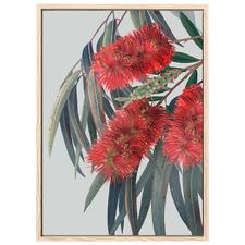 Carinya II Australian Bottlebrush Printed Wall Art