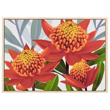 Beacon Of The Bush Tangerine Australian Waratah Printed Wall Art