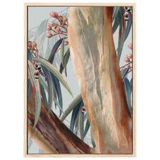 Boroondara III Australian Blue Gum Printed Wall Art