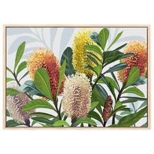 Saltbush Australian Banksia Printed Wall Art