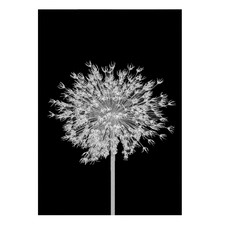 Blooms In B&W I Printed Wall Art
