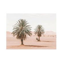Moroccan Desert Palm II Printed Wall Art