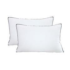 Casa Decor Silk & Microfibre Pillows (Set of 2)