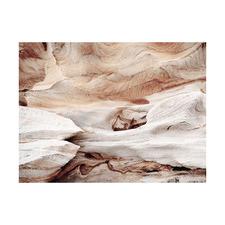 Canyon Wall Printed Wall Art